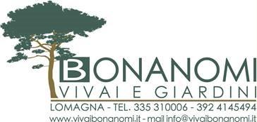 Bonanomi